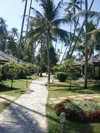 Nikki Beach Resort Koh Samui: The walkway between the bungalows