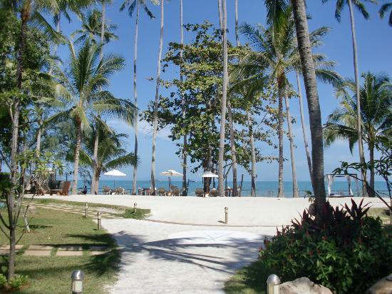 Nikki Beach Resort Koh Samui : Another view from our room