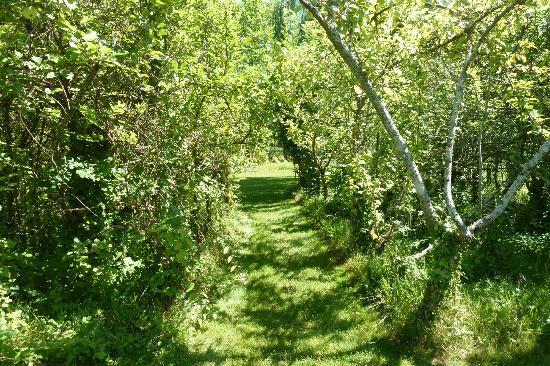 La Roseraie de Provins : jardin