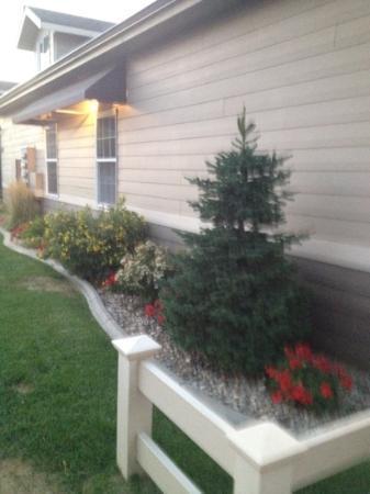 Stratford Suites: landscaping outside