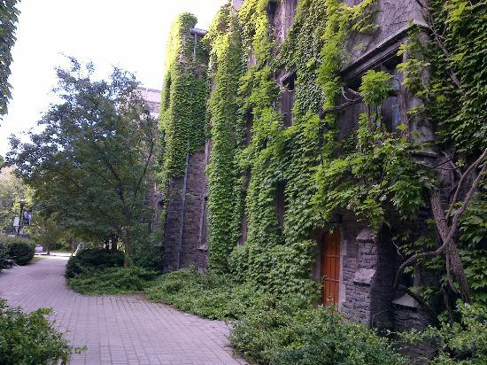 University of Toronto: Ivy league! (after all, this is the