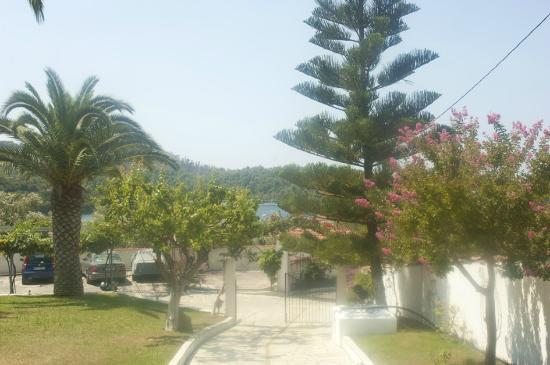 Hotel Panormos Beach Skopelos: Very pretty grounds