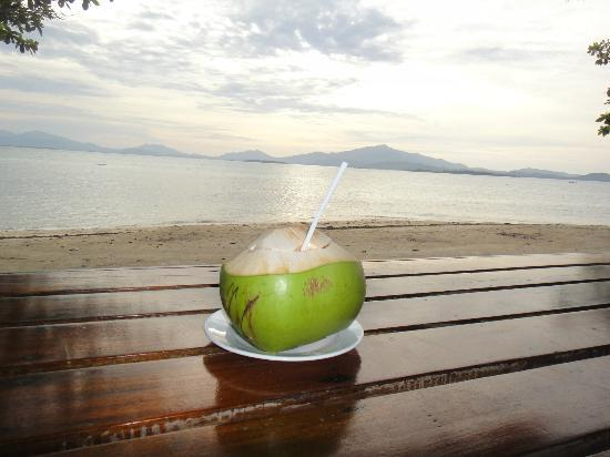 Dos Palmas Island Resort & Spa: coconut in paradise