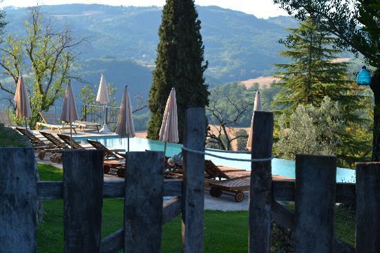 Borgo di Carpiano : pool