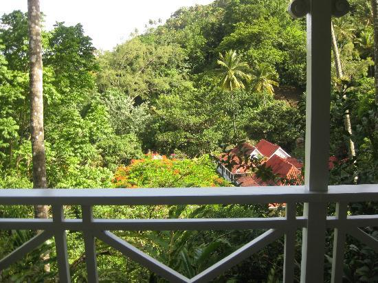 Fond Doux Plantation & Resort: View from Coconut Cottage