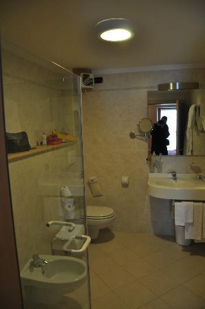 Hotel Pedranzini: Bagno