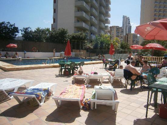 Photo of Palm Court Apartments Benidorm