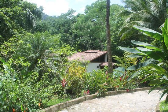 Villas Pico Bonito: Property 9