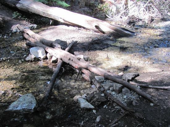 石灰窯州立公園照片