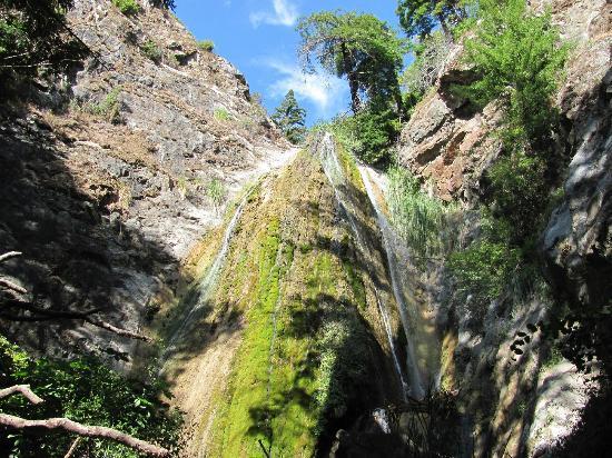 Limekiln State Park: Limekiln Falls