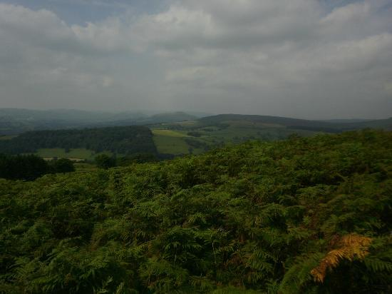 Stanage Edge: View