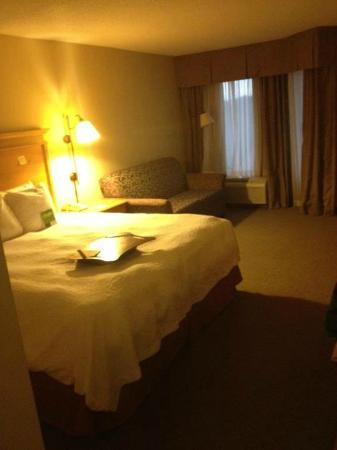 Hampton Inn & Suites Atlanta/Duluth/Gwinnett County : Slept like a Queen in this King bed!