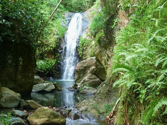 Ua Pou, Polinésia Francesa: cascade de Tetahuna