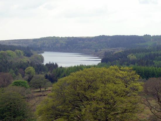 Burrator Reservoir: The fantastic view from one of the tors.