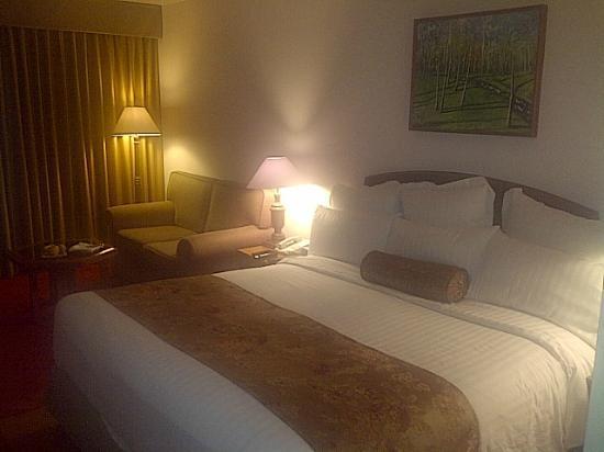 Karachi Marriott Hotel: Room