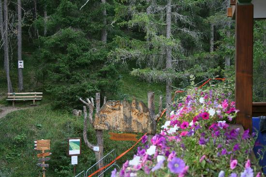 Hotel Aqua Bad Cortina: vista dal terrazzo