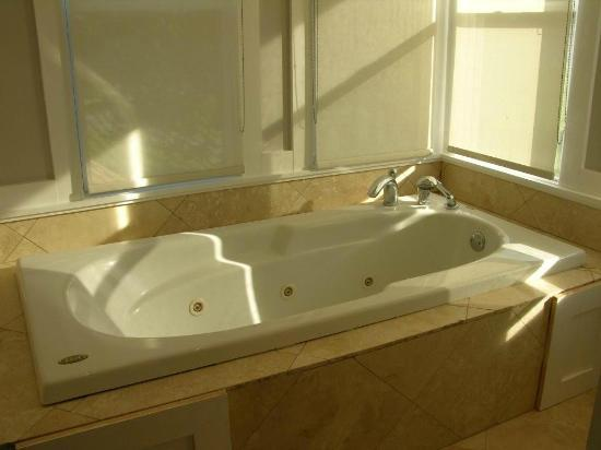 Finger Lakes Golf House: Jet Tub
