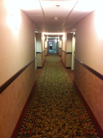 Best Western Plus Liverpool-Syracuse Inn & Suites: hallway