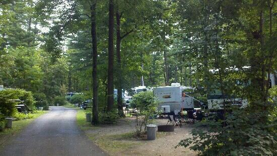 Lake George RV Park: This is the more crowded 200 sections