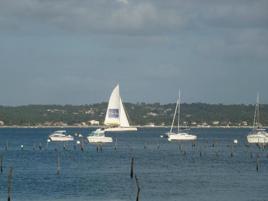 Pinasse Cafe: Lovely day for sailing