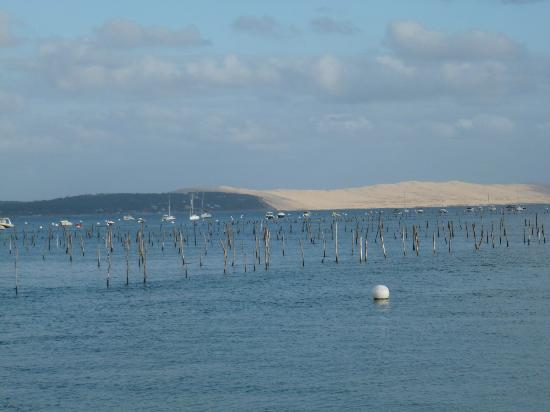 Pinasse Cafe: View of the oyster beds