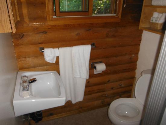 Dog Lake Resort: bathroom small clean