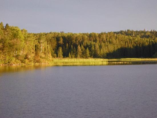Dog Lake Resort: overlooking lake