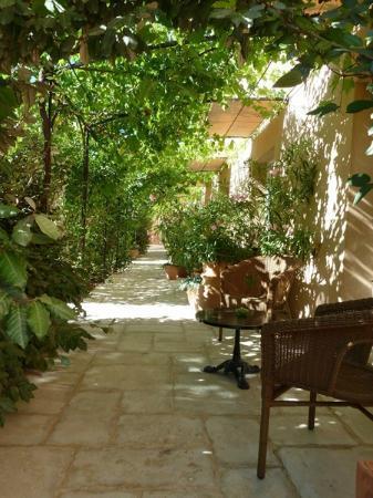 Les Restanques de Moustiers : Autres terrasses chambres rdc