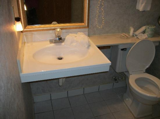 Baymont Inn & Suites Perrysburg: Lower sink which was good