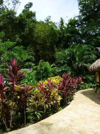 Villas Hermosas: Colorful plantings