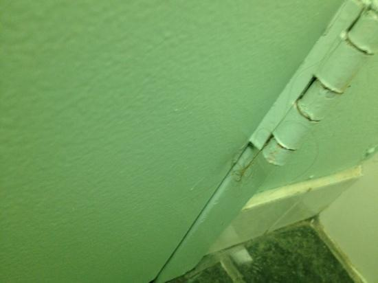 Howard Johnson Inn - Sandusky Park N. Entrance : bathroom door hair and black smudge