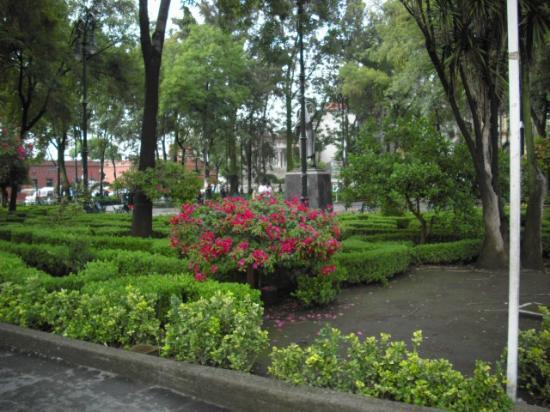 Coyoacán: Plaza central