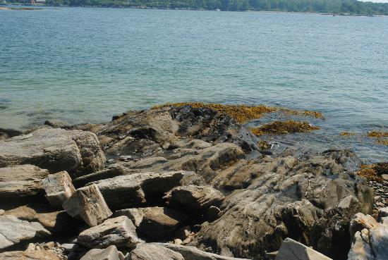 Peaks Island House: Rocky Outcropping at Sandy Beach