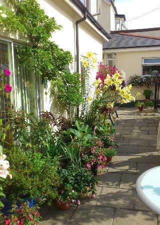 Barnabas House: Courtyard garden