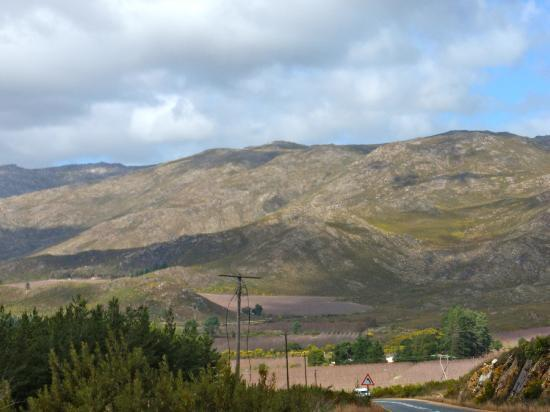 Franschhoek Pass: Rolling Hills
