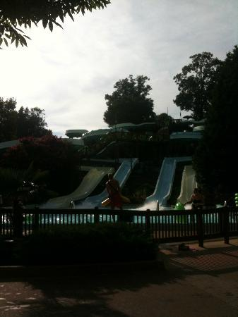 Water Country USA: Jet Scream