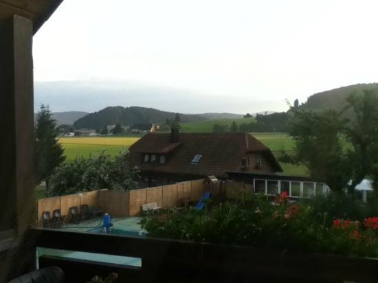 Hotel Sonnenmatte: Good view of the Black Forest!