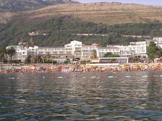 Petrovac, مونتينيغرو: Hôtel Palas vu depuis la mer 