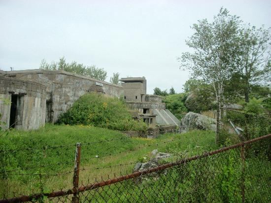 Fort Constitution Historic Site: Some ruins and gun emplacements at the fort.