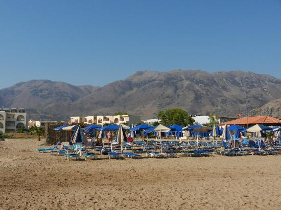 Hotel Delfina Beach: transat à la plage
