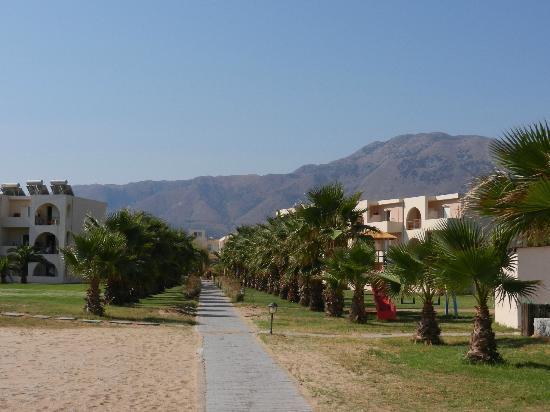 Hotel Delfina Beach: vue depuis la plage