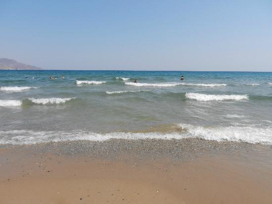 Hotel Delfina Beach: superbe mer