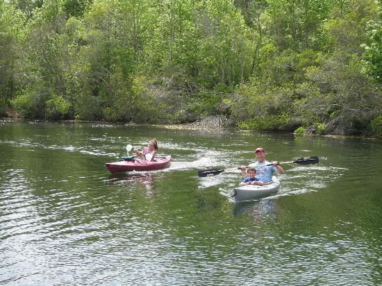 Holly Shores Camping Resort: kayak rentals