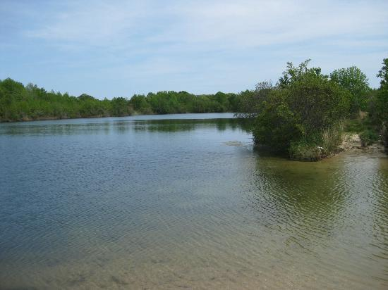 Holly Shores Camping Resort: freshwater lakes adjacent to campground