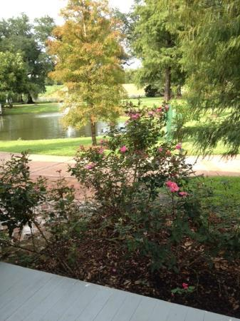 Nottoway Plantation Resort : Pond View from Cottage Room