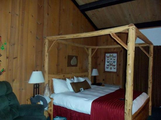 Shawnee State Park: Room in the Lodge