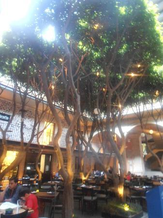 Hotel Downtown Mexico: patio central