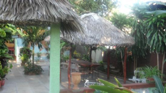 Hostal Borrell Iznaga: The backyard