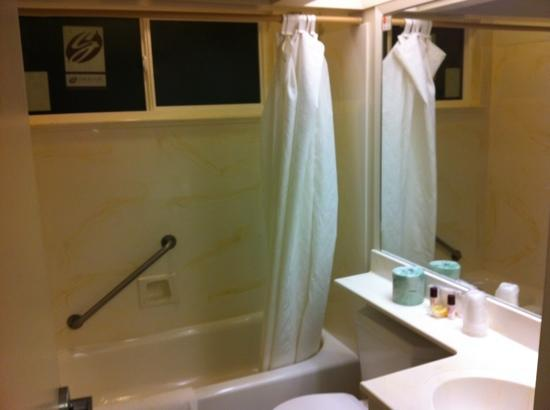 Rodeway Inn & Suites San Francisco: newer looking bathroom