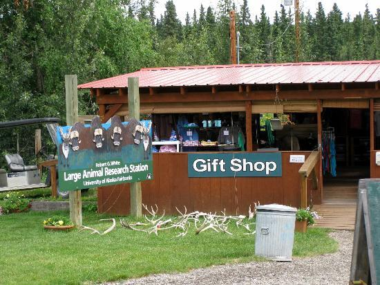Large Animal Research Station: Gift Shop - Fairbanks Research Station